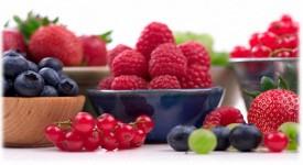 Природные Антиоксиданты — на Страже Здоровья
