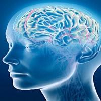 Психическое Здоровье – Определение, Факторы, Сохранение