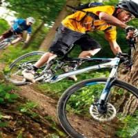 Как Правильно Выбрать Горный Велосипед – Советы