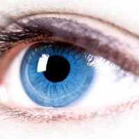 Важные Правила Гигиены Глаз