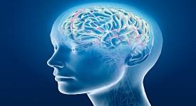Психическое Здоровье - Определение, Факторы, Сохранение