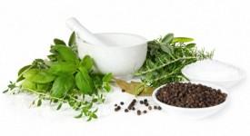 Лучшие Травы для Женского Здоровья и Советы по Использованию