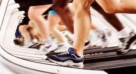 Физическая Активность и Здоровье - Взаимосвязь Установлена