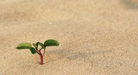 Как Начать Жизнь с Чистого Листа? - Лучшие Советы и Рекомендации
