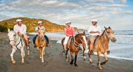Конные Прогулки — Основные Преимущества для Здоровья
