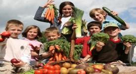 Доказанные Вред Вегетарианства - Берегите своё Здоровье