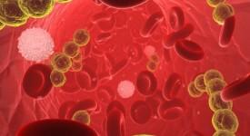 Комплексная Диагностика Организма - Преимущества и Виды Обследования