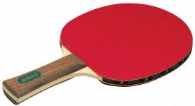 Профессиональные Ракетки для Настольного Тенниса - Доводы Специалистов