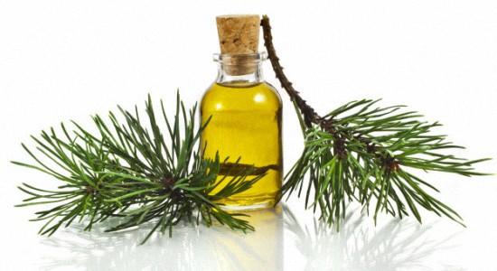 Пихтовое масло применение и польза