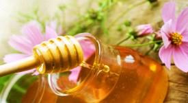 Вся Польза Мёда для Здоровья