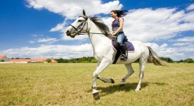 Верховая Езда - Плюсы для Здоровья