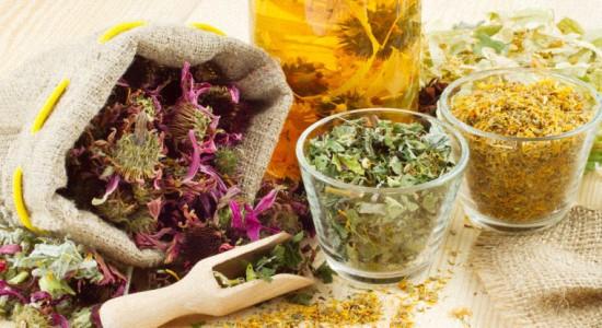 Эффективные травы для повышения иммунитета