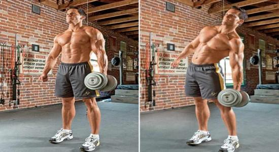 Лучшие упражнения с гантелями для спины