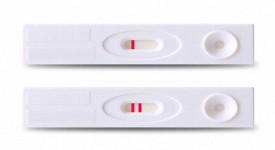 Когда Начинает Показывать Тест на Беременность
